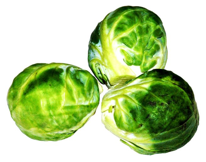 Oh the humanity!  Little cabbages make you gassy!  (Image from wikimedia commons)