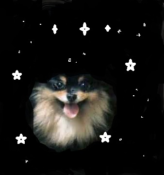 Ancient Greeks first named the Galaxy Pomerania.  They assigned the stars to the deity Fluff Yapper.  (Image from the creative hands of this very author)