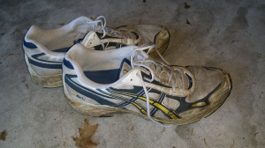 Behold the royal yard shoes!  Worn by his majesty whilst cleaning up after the royal pooch.